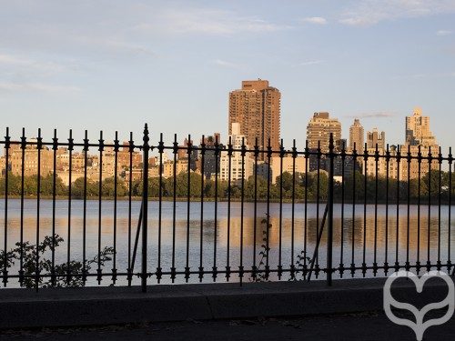 Central Park Late Afternoon Jogging 4