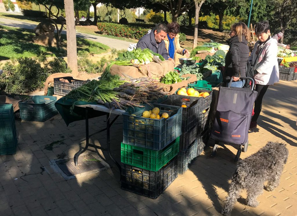 Bio Obst Bio Gemüse in Malaga kaufen.