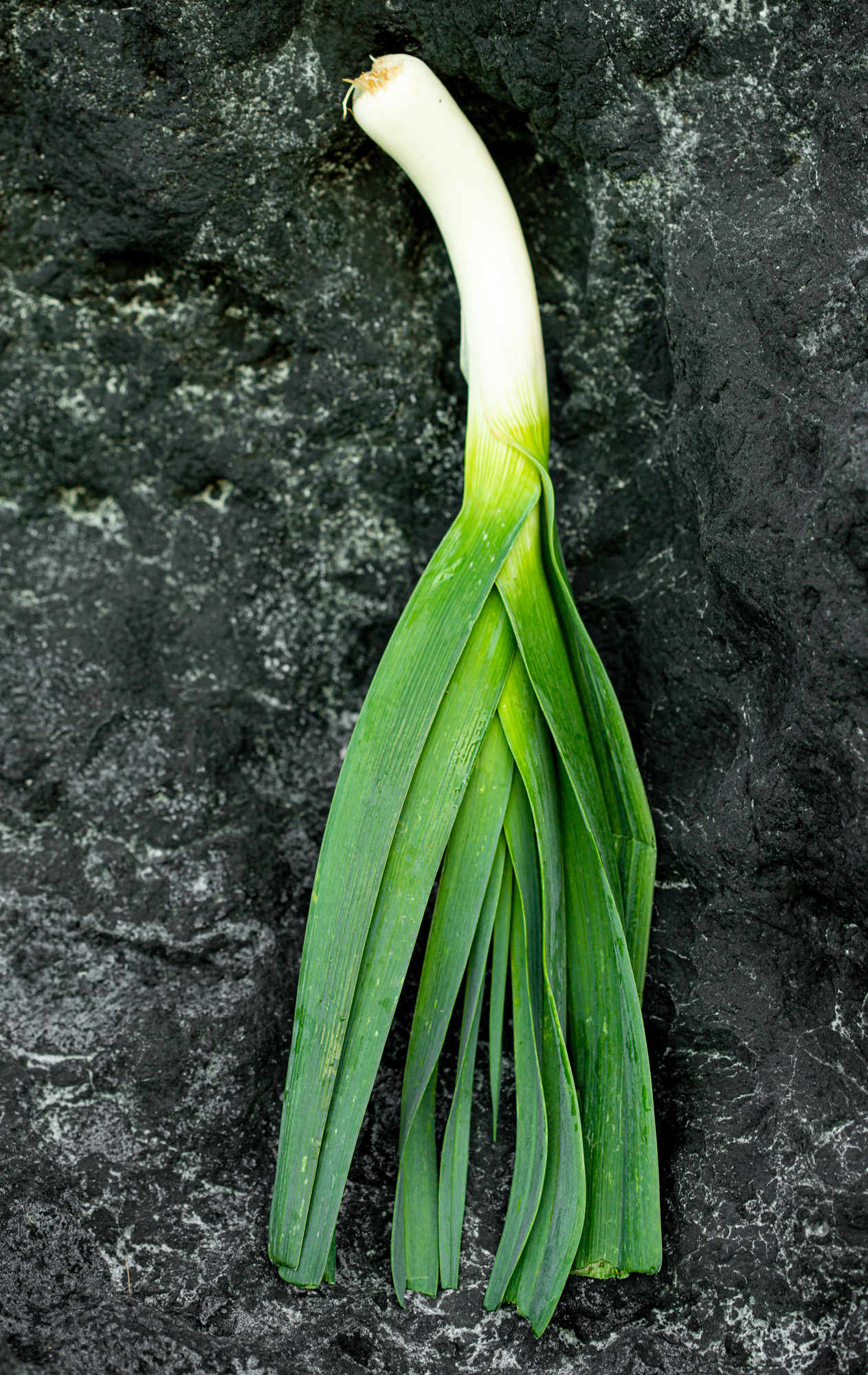 Spicy and crunchy. Recipes with leek.