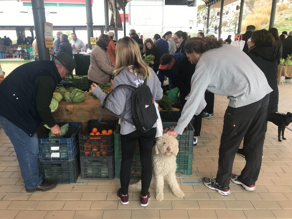 Biomarkt Bio Einkaufen in Malaga. Bio Obst und Bio Gemüse Spanien.