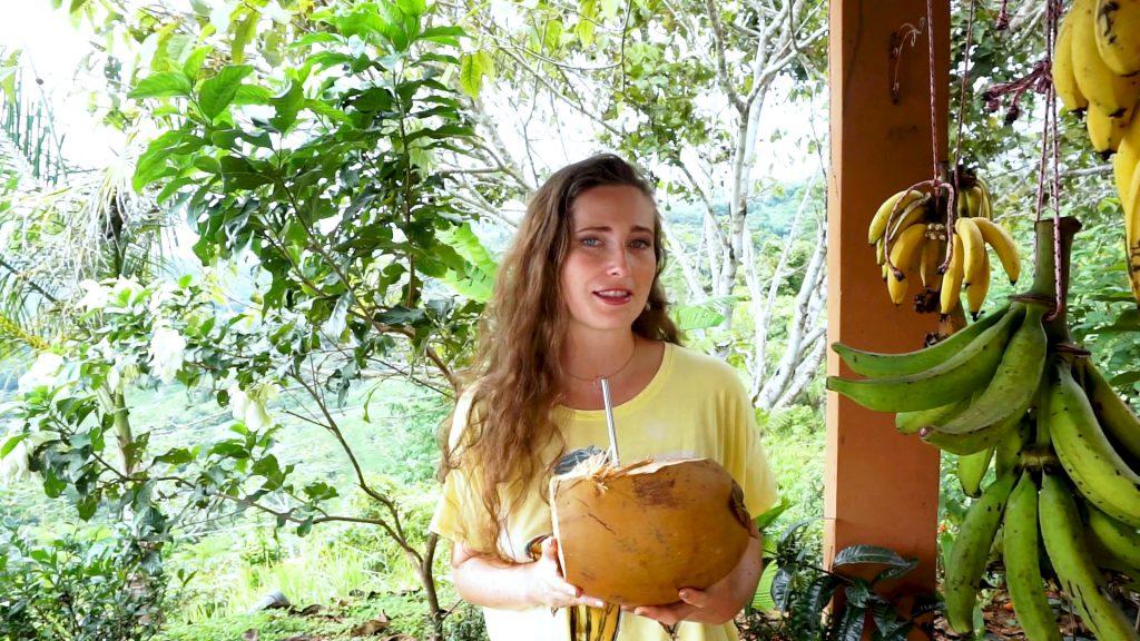 Was ich in Costa Rica gegessen habe. Rohkost Essen in Costa Rica.