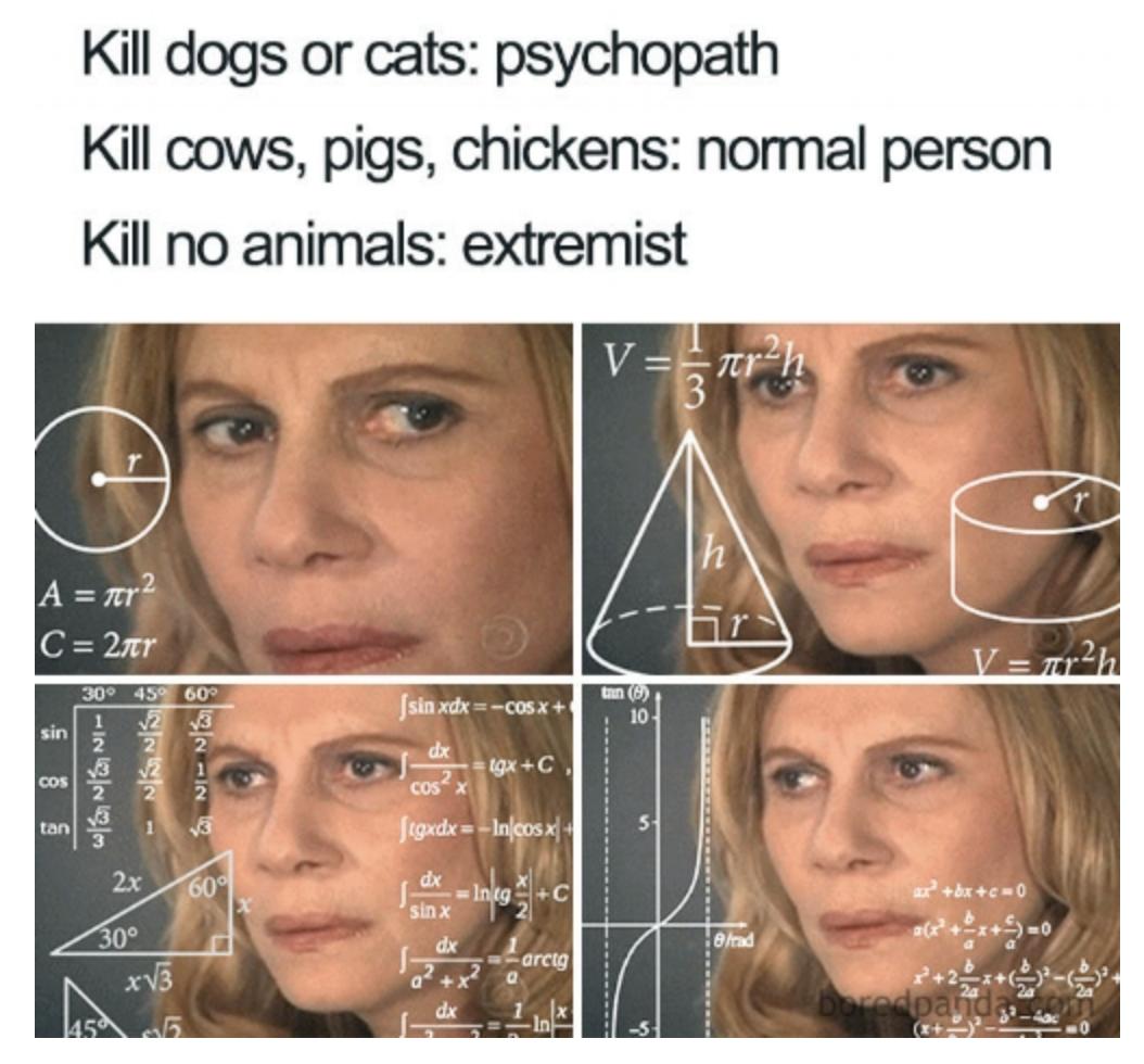 Beste vegane Memes