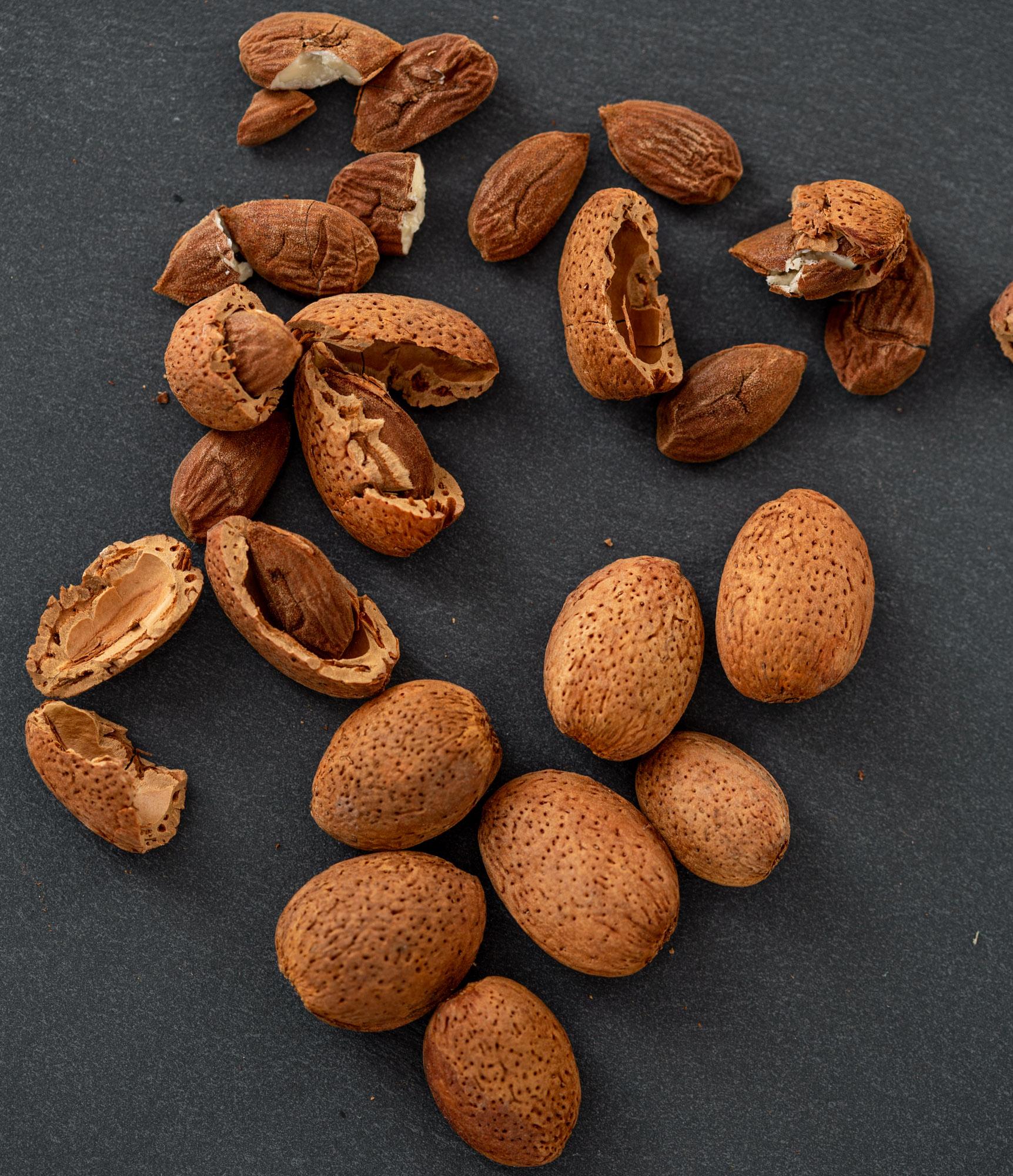 mandeln rohkost bio