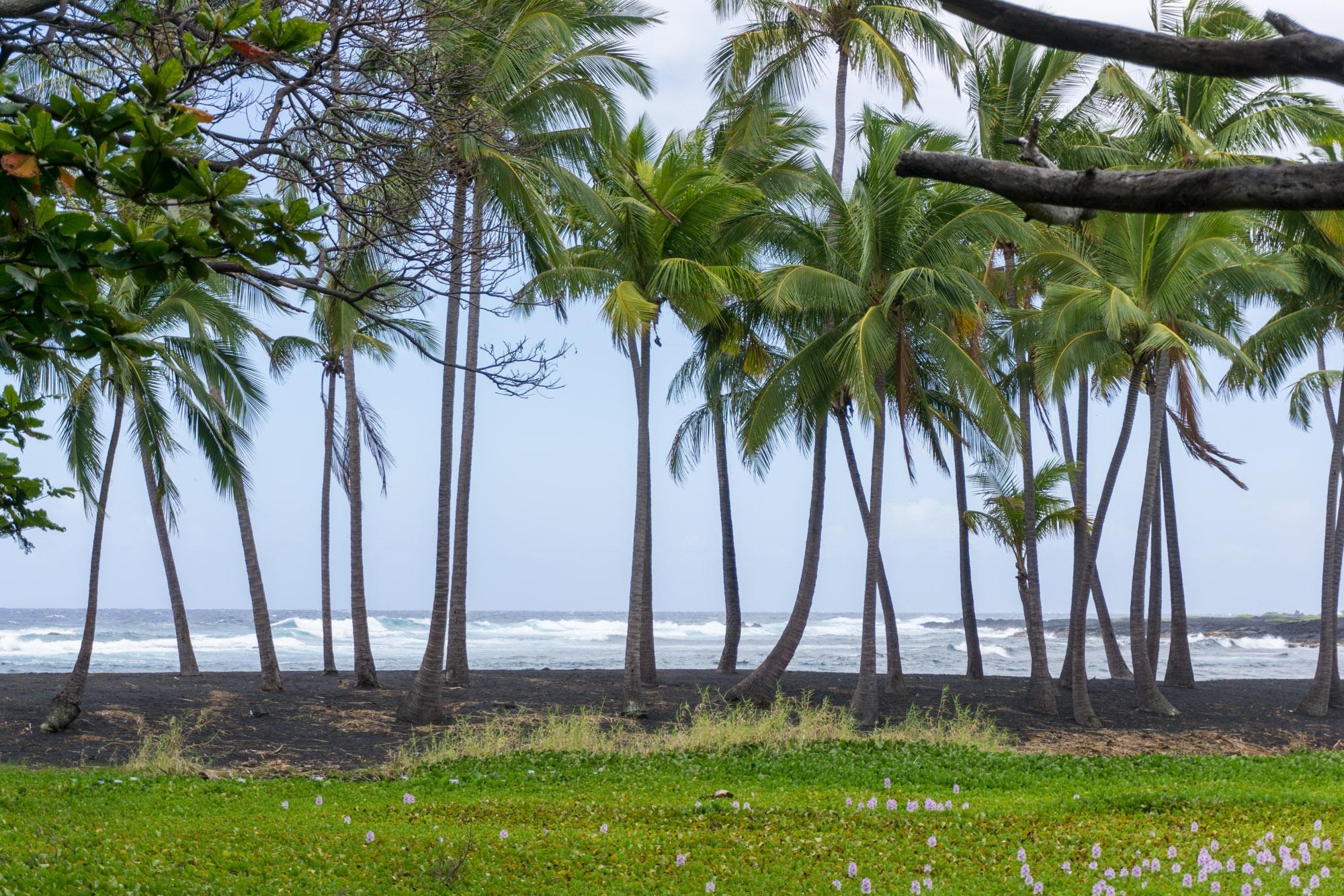 Black Sand Beach on Big Island, Hawaii