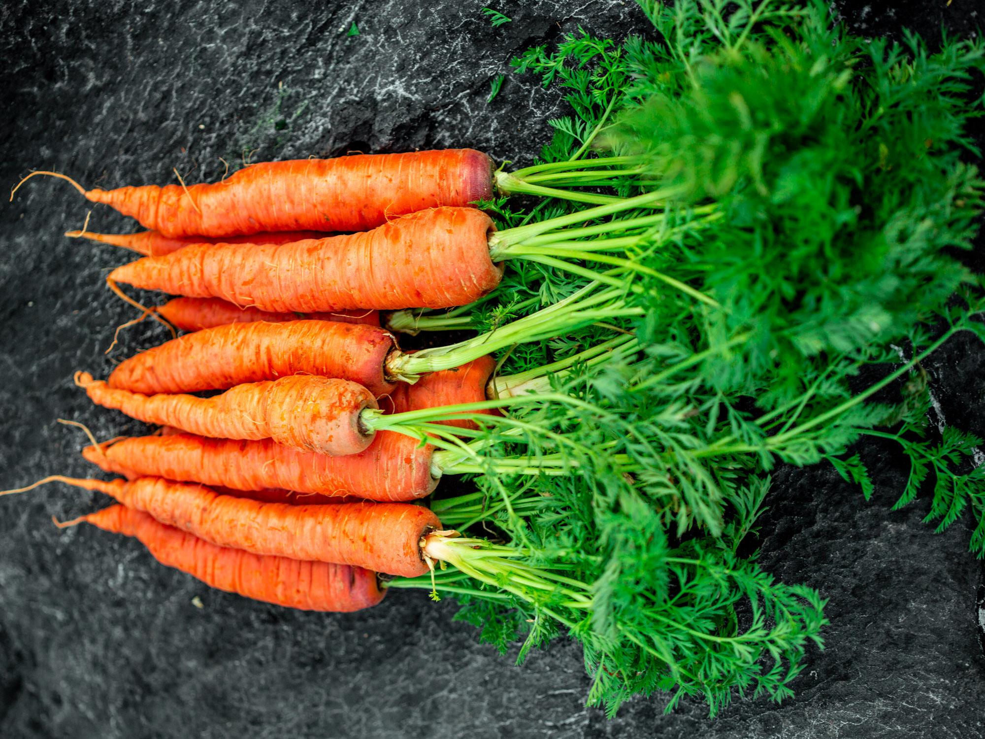 Knackig frisch. Vegane Rohkost Rezepte mit Karotten.