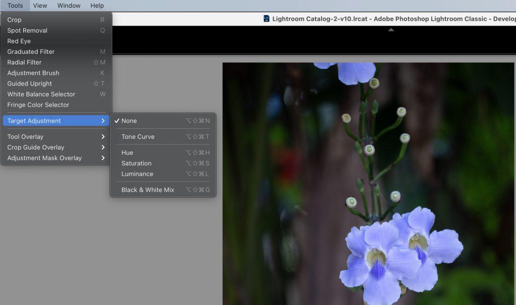 Lightroom Develop Shortcuts in the Develop Module.