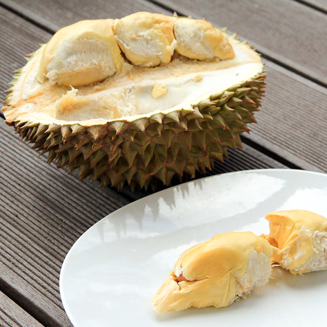 durian plate