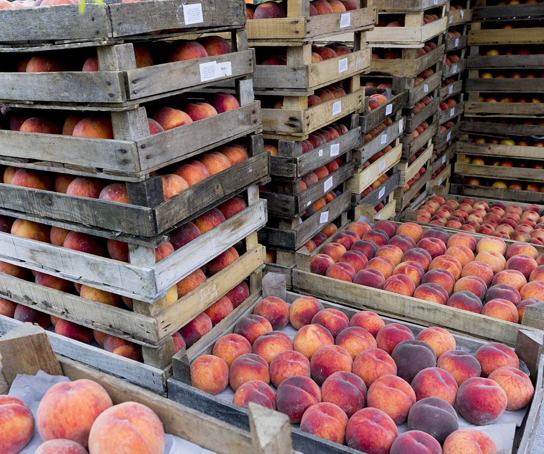 farmersmarket organic peaches fruit mom park organic market budapest peaches peach organic