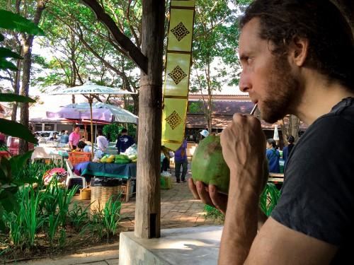 fruitadmin coco nut green market jj market organic market chian mai