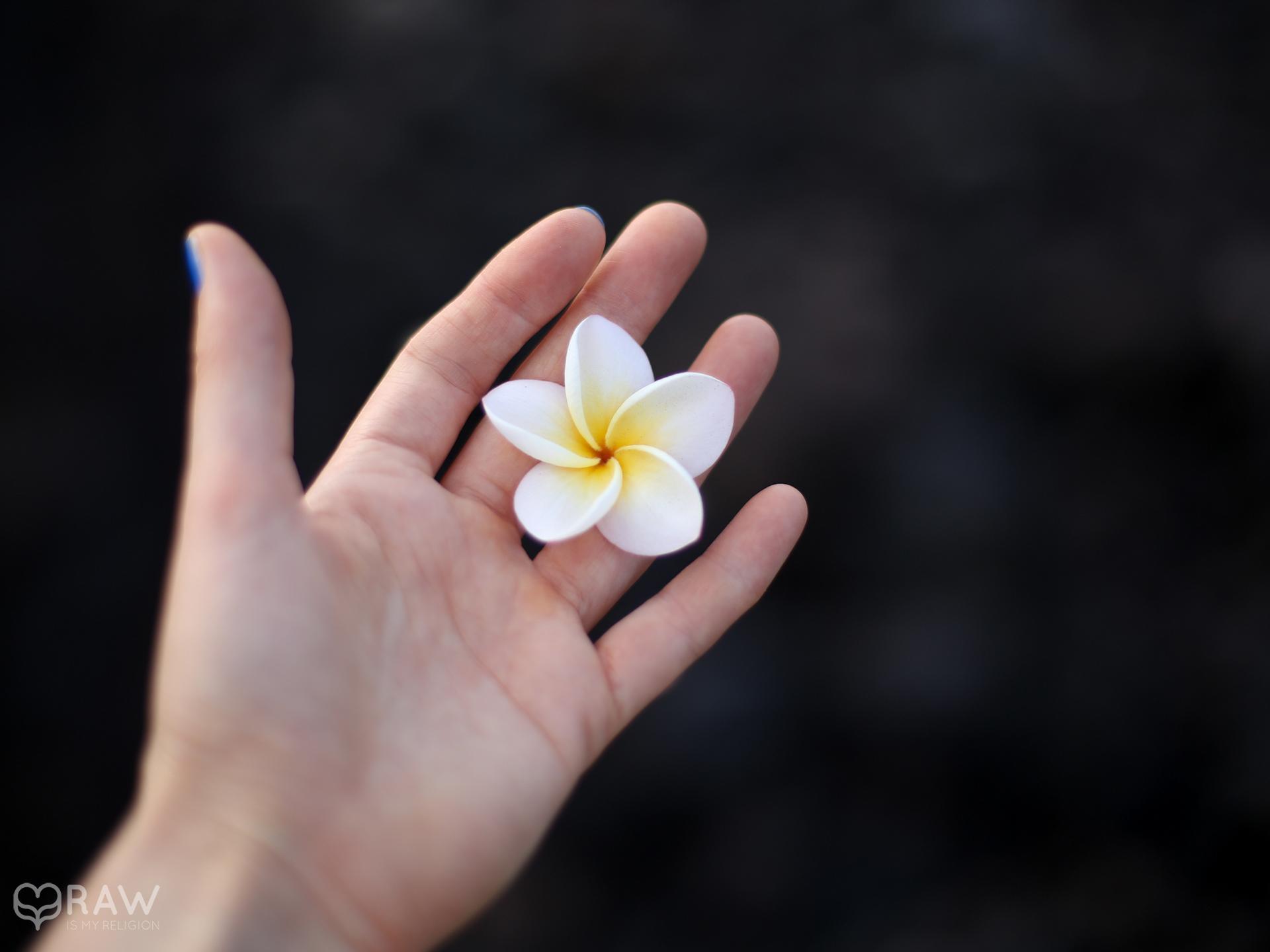 hand flower tenerife