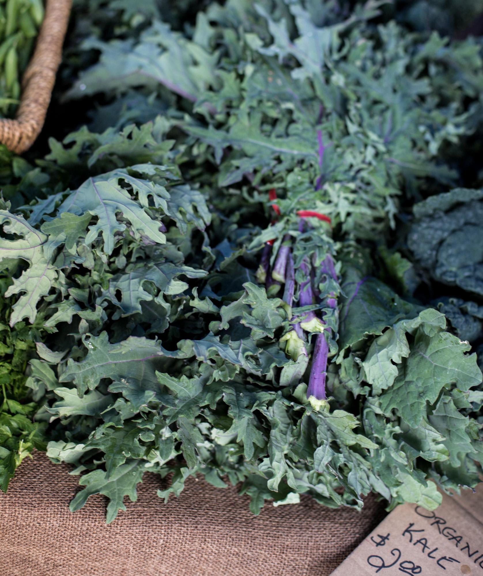 Kale Grünkohl für vegan Rohkostgerichte.