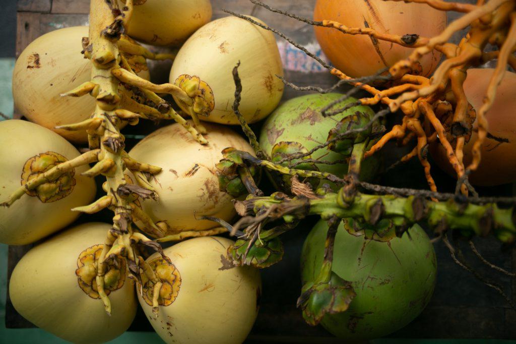 Kokosnuss öffnen mit Machete und verschiedenen weniger gefährlichen Öffnern.