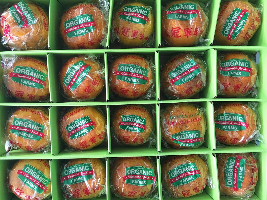organic clementines kuala lumpur organic food malaysia