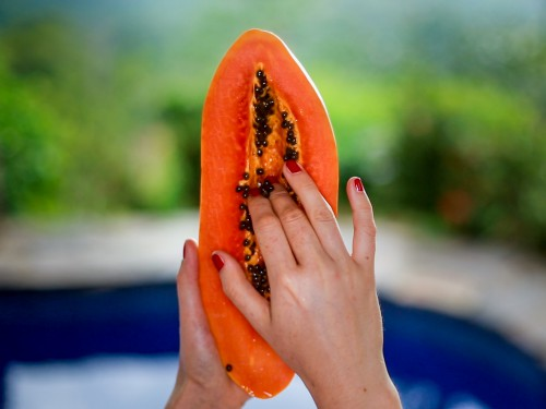 papaya how to pick