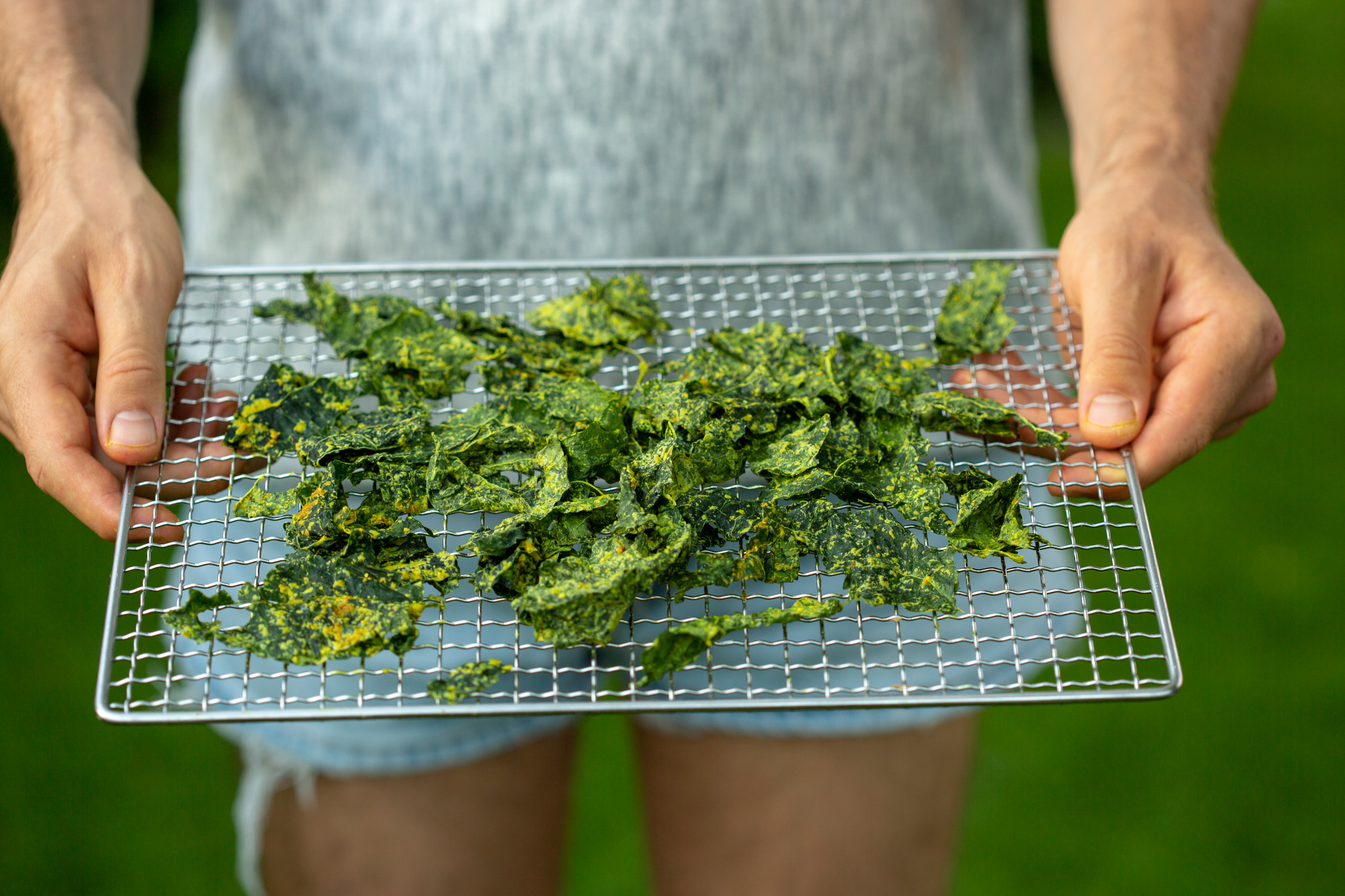 Super easy kale chips