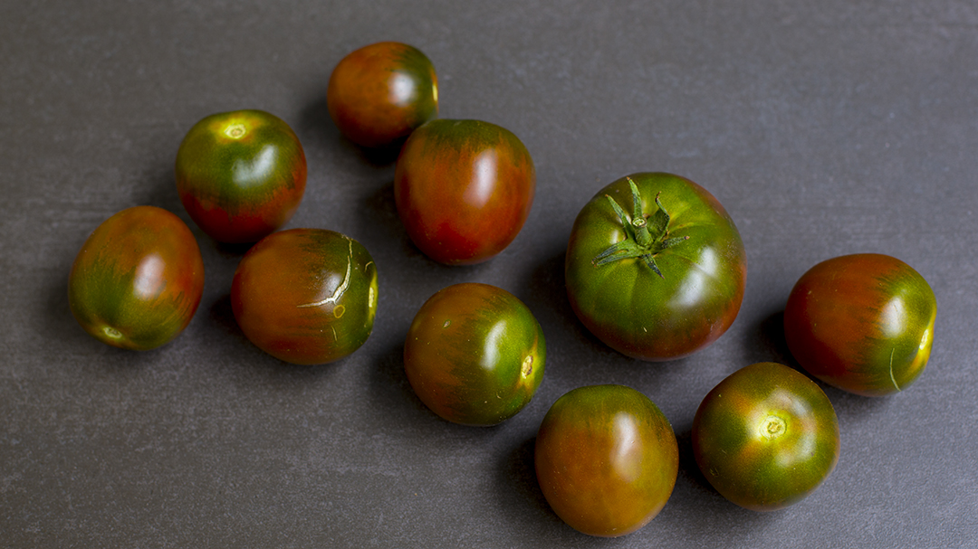 tomato loves green red tomatoes
