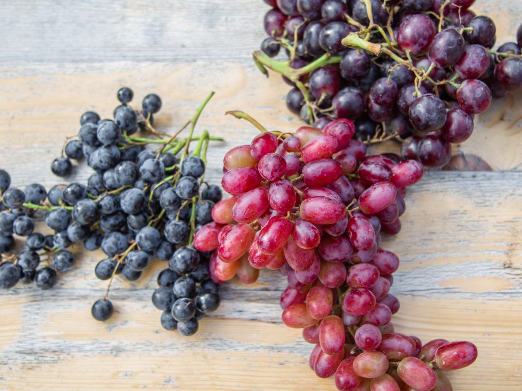 Trauen essen und Rezepte mit Bio-Trauben. Vegan und Rohkost.
