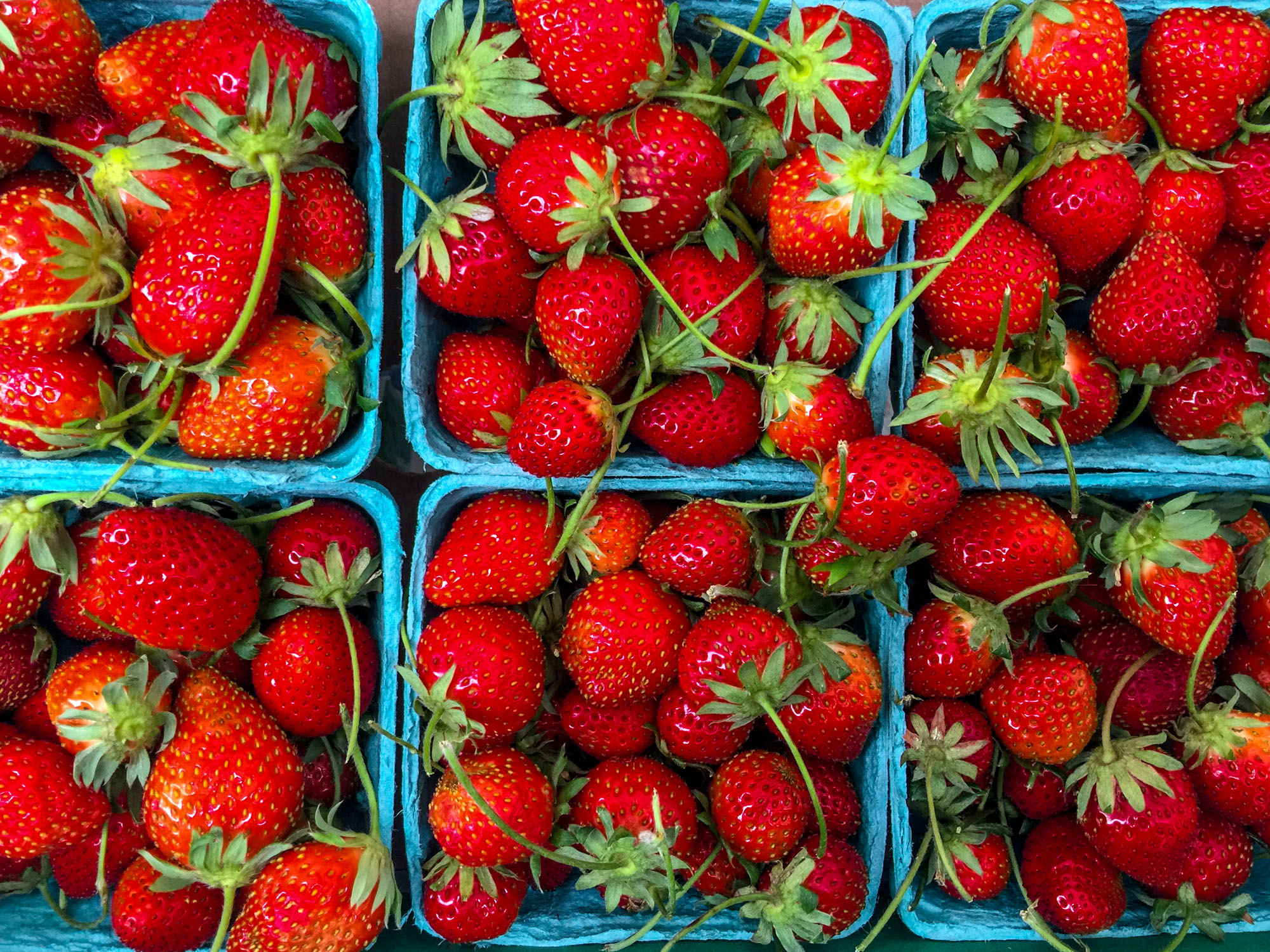 Aus dem Garten. Rohkost Rezepte mit Erdbeeren.
