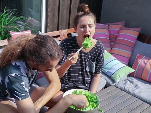 was wir heute essen salat rohkost
