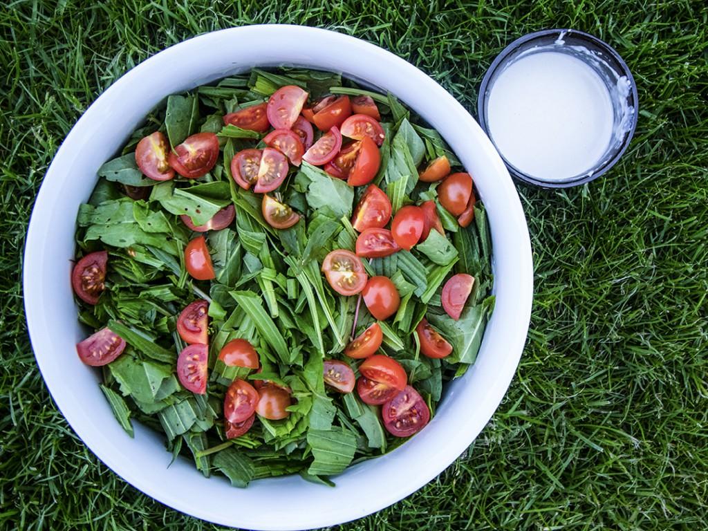 Salat mit Wildkräutern aus dem Wald
