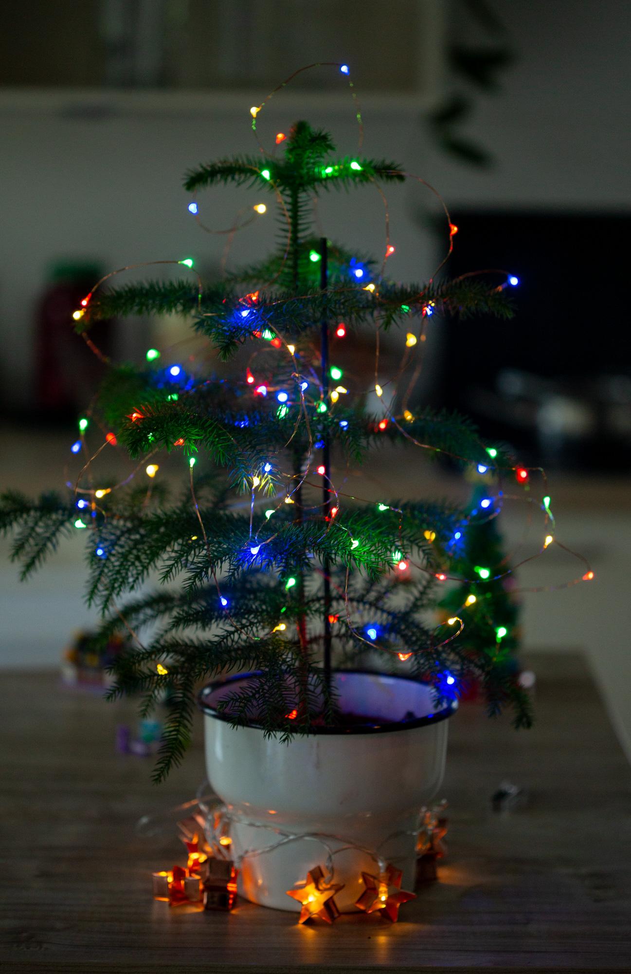 3 Weihnachtsbaum-Alternativen